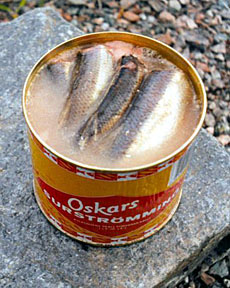 One of the world 39 s strangest dishes for Swedish fermented fish